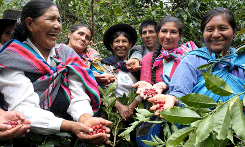 Try these Fairtrade products